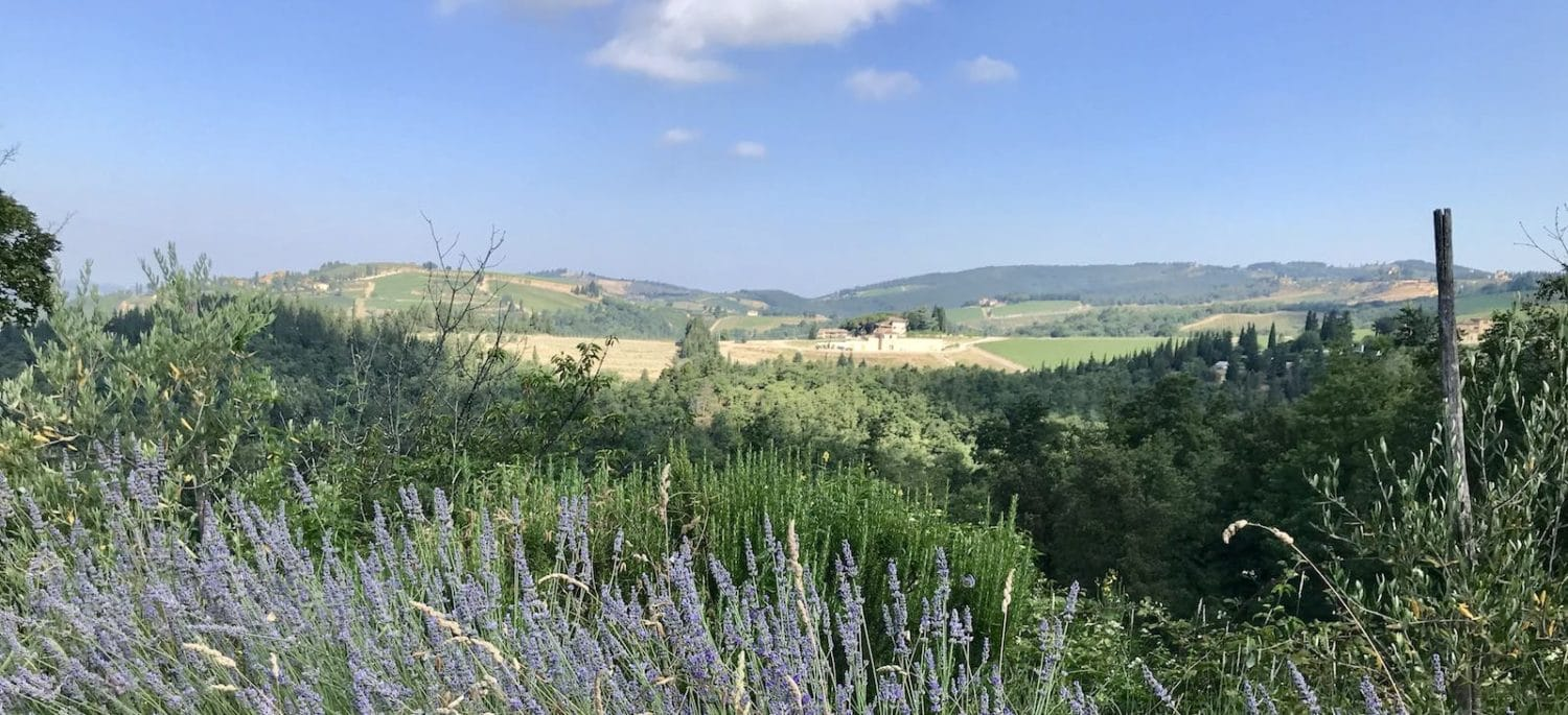 Beautiful natural wine grown in Italy